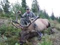 Elk2.jpg