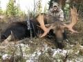 moose3